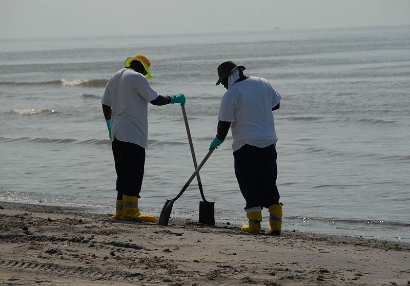 800px-Beach_Clean_up_during_DWH_8743617563